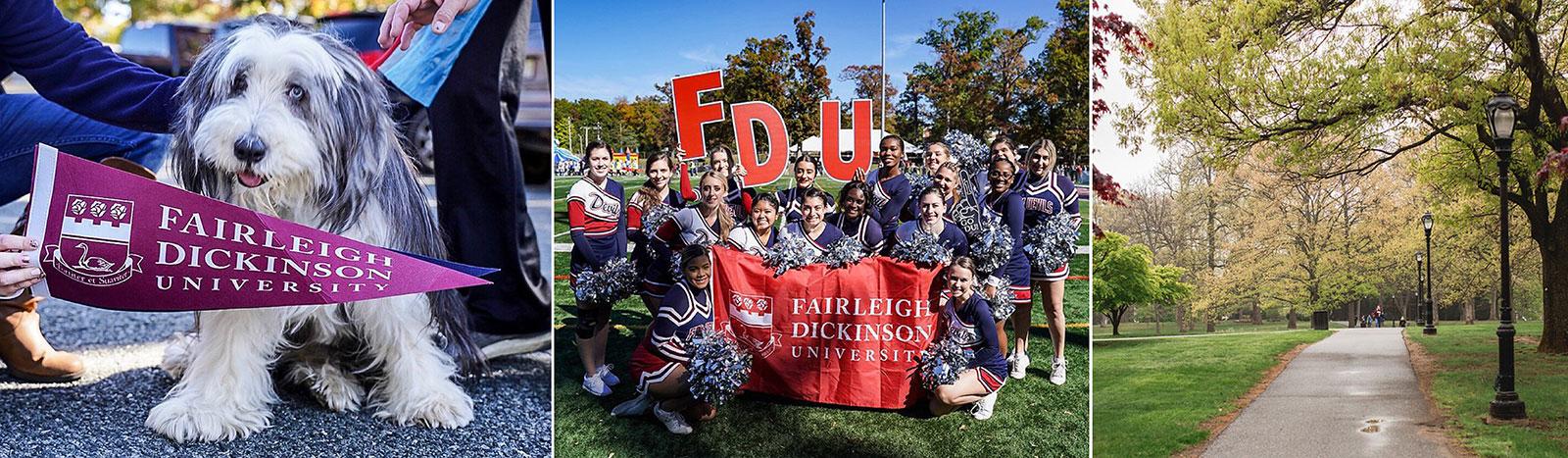 FDU Spirit Banner